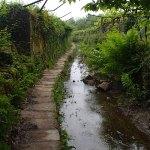 Hinter Ponte de Lima, Caminho das Tojeiras