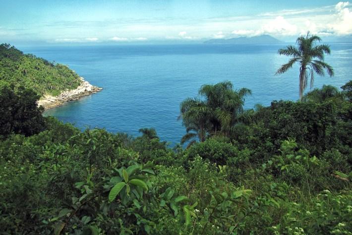 ilha-vitoria-e-ilha-de-buzios-ilhabela