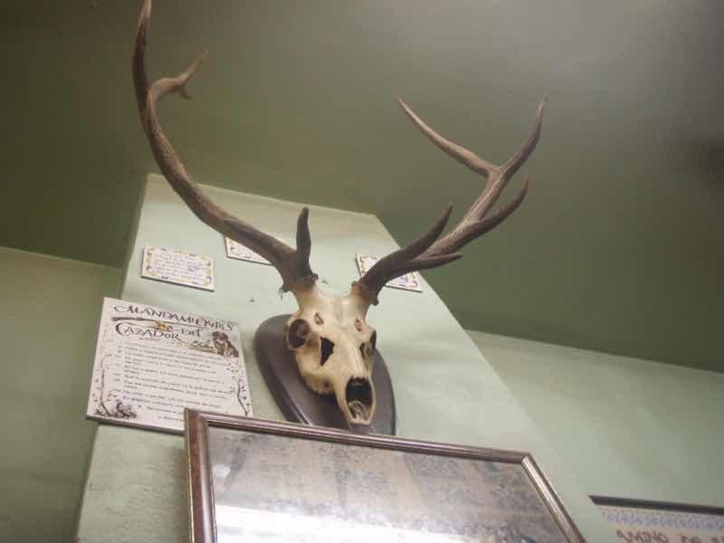 502鹿くび