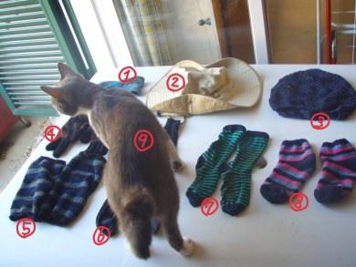 カミーノ持ち物、サンティアゴ巡礼持ち物、靴下、帽子、猫