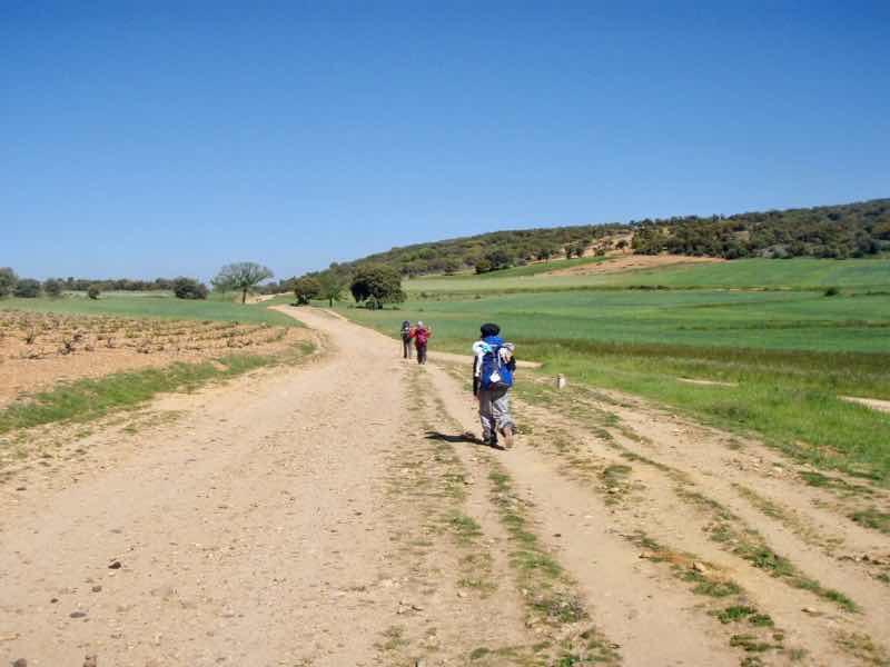 520 カミーノ オルビゴ 広い田舎道 12クリス