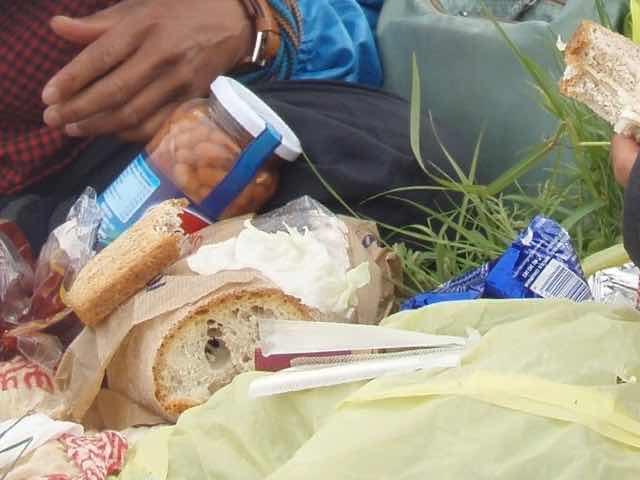 528 カミーノ トリカステーリャ 草原ご飯