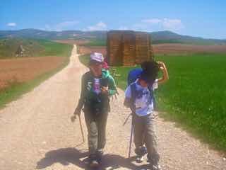 425 ロスアルコス スペイン田舎道 12 正面右 ワラ山カミーノ