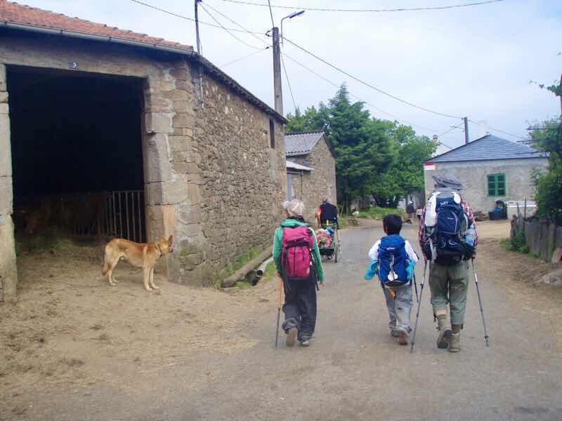 602 Camino カミーノ パラスデレイ papas de rai 向かう 田舎道犬 12n