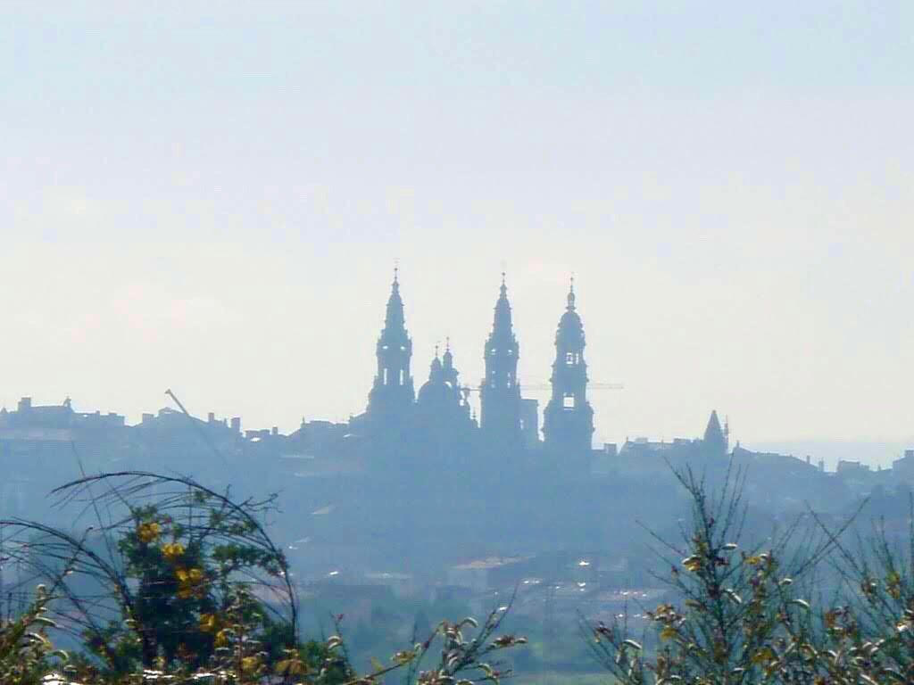 607サンティアゴ巡礼 サンティアゴ大聖堂 遠く2カミーノ