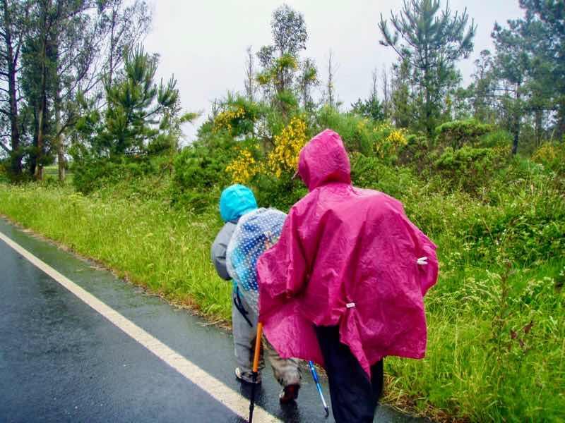 608サンティアゴ巡礼 道雨アスファルト12 カミーノ アス・マロナス