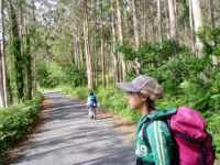 613ムシア サンティアゴ巡礼 最終地Muxia ムシア 田舎道1横 2杉並木一本道