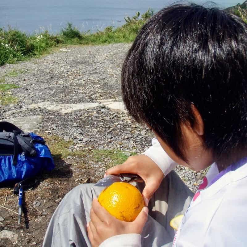 610スペイン巡礼田舎 オレンジ2 フィステラ