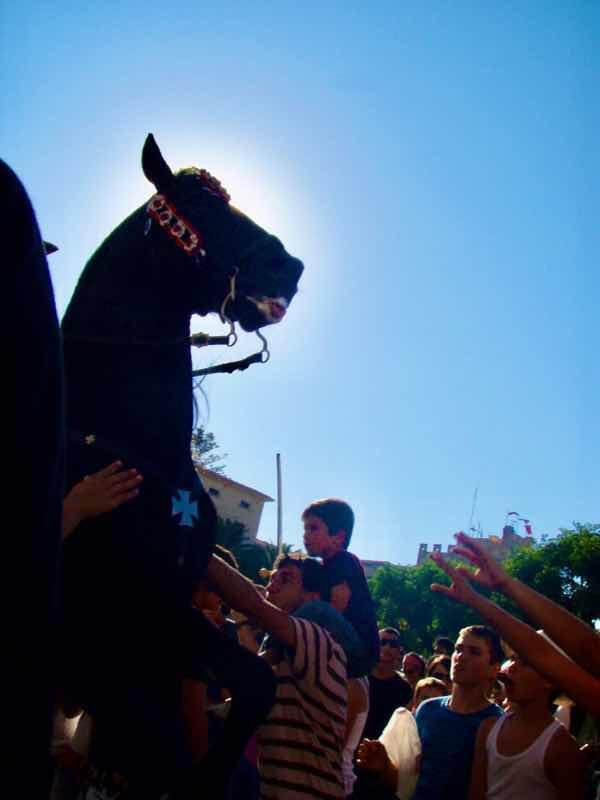 623メノルカ島 サン•フアン 馬祭り Menorca 馬 親子