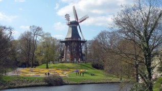 Die mächtige Windmühle wurde noch bis 1950 genutzt. Heute gilt sie als Wahrzeichen der Wallanlagen.