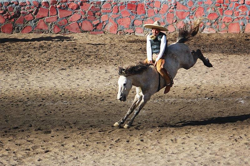 Charreadas en El Rancho Los Castro