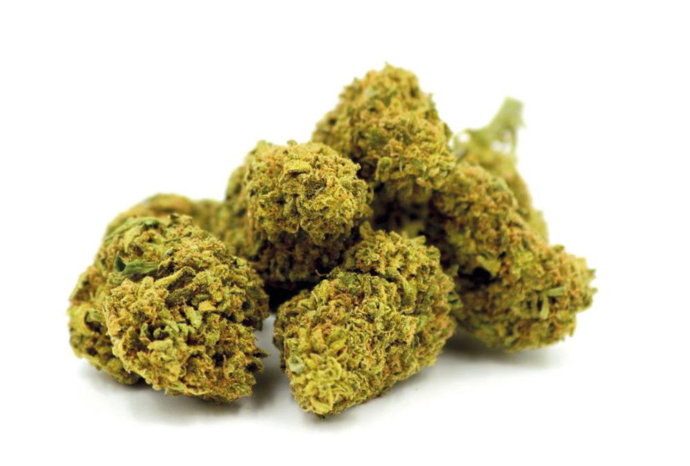 La legalización del cannabis se agotó, la gobernadora convocará una sesión especial