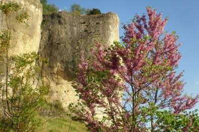 Cuenca 17