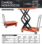 Modelos de Carros Hidraulicos
