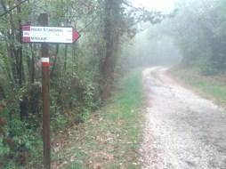Sul sentiero...