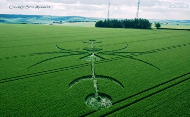Crop-Circles-Newton-Barrow407-Jun.-17-09.36