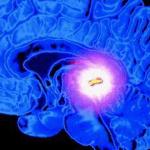 Khecari Mudra  : come attivare e riequilibrare pituitaria e pineale
