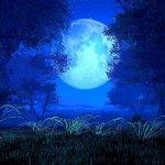 Il segreto  della luna blu…che travolge e rigenera