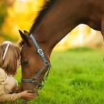 GLI ANIMALI CI AIUTANO A MANTENERE VIVO IL  CONTATTO CON L'ANIMA