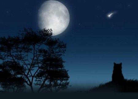 luna-nuova-bilancia
