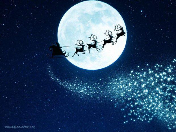 magical_moonlight_night_reindeer_christmas_hd-wallpaper-1326741
