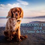 L'ANNO DEL CANE di TERRA YANG -16 FEBBRAIO 2018 -OROSCOPO CINESE DEL 2018