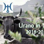 URANO IN TORO 2018-2026 : LA RIVOLUZIONE DELLA TERRA