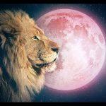 LUNA PIENA IN LEONE – 9 FEBBRAIO 2020 -Intuitive Astrology