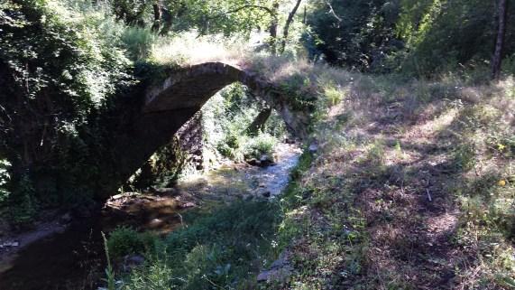 ponte del cicaleto.jpg