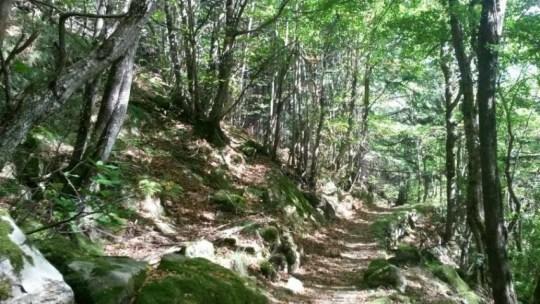 Il Cammino della Linea Gotica: ripercorrendo i passi della Resistenza | Cammini d'Italia