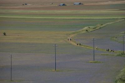 Cammino Terre Mutate Tappa 8 Castelluccio di Norcia - Arquata del Tronto (32)