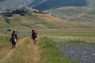 Cammino Terre Mutate Tappa 8 Castelluccio di Norcia - Arquata del Tronto (59)