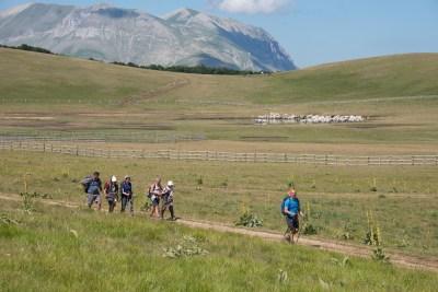 Cammino Terre Mutate Tappa 9 - Arquata del Tronto - Accumoli (16)