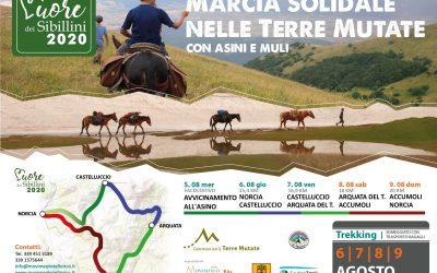 6 – 9 Agosto 2020 Nelle Terre Mutate con asini e muli, una marcia solidale