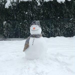 Tuyết rơi lạnh lắm ai ơi!(Ảnh:fbTùng Đình Nguyễn)