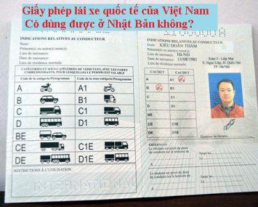 Mẫu giấy phép lái xe quốc tế của Việt Nam có dùng được ở Nhật Bản không