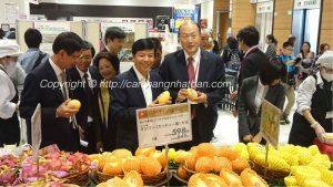 Giá xoài Việt Nam trong siêu thị Nhật bản