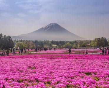 Những điểm du lịch đẹp nhất Nhật Bản