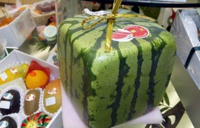 12600 yên (khoảng 112.50 USD) cho 1 quả dưa hấu