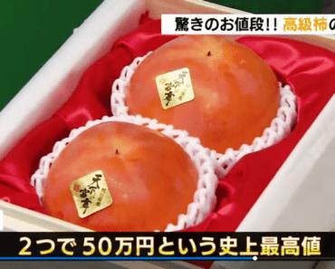 Hai quả hồng có giá hơn 100 triệu ở Nhật Bản