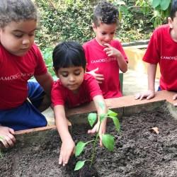 Blog   A Idade Escolar Ideal