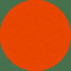 t-rex_2017_p68-dazzling-orange