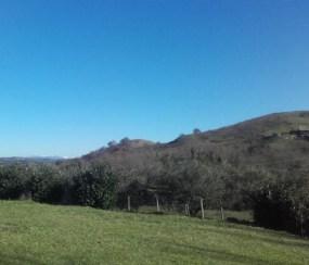 Versante nord dei colli di Monte Lupoli nei pressi dei quali sorse il Borgo di S. Alexandro