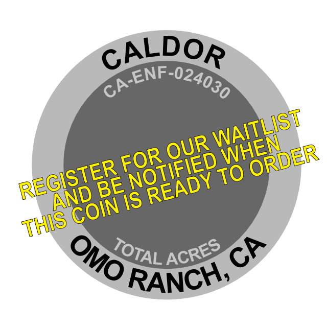 Caldor Fire Challenge Coin
