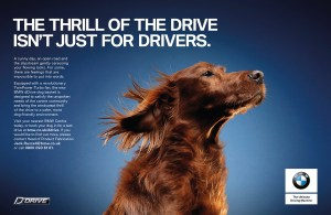BMW dDrive Dog Basket
