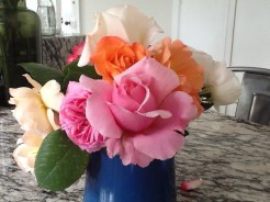 Home picked Roses