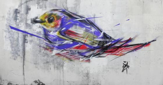 graffiti-birds-by-brazilian-artist-l7m-9