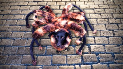 Mutant-Giant-Spider-Dog-