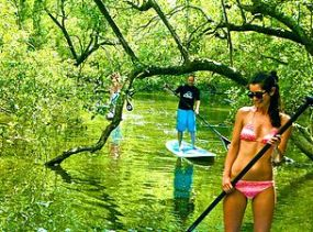 tunnel-of-trees-byronstanduppaddle