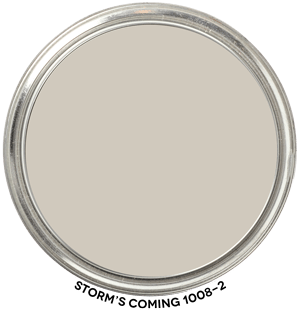 Storm's-Coming-1008-2 PPG Paint Blob